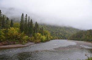 DSC_5044 2017-09-17 Canada-Parc de la Gaspésie