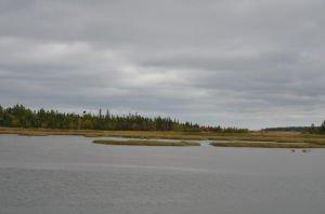 DSC_5048 2017-09-19 Canada-NB Acadie
