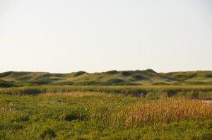 DSC_5287 2017-09-23 Canada-NS Île du Prince Edouard - Greenwich