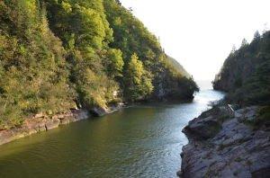 DSC_5454 2017-09-26 Canada-NB Parc de Fundy Pont Wolfe