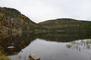 DSC_6048 2017-10-09 Canada Qc Parc des Grands Jardins Le Pioui Lac Georges